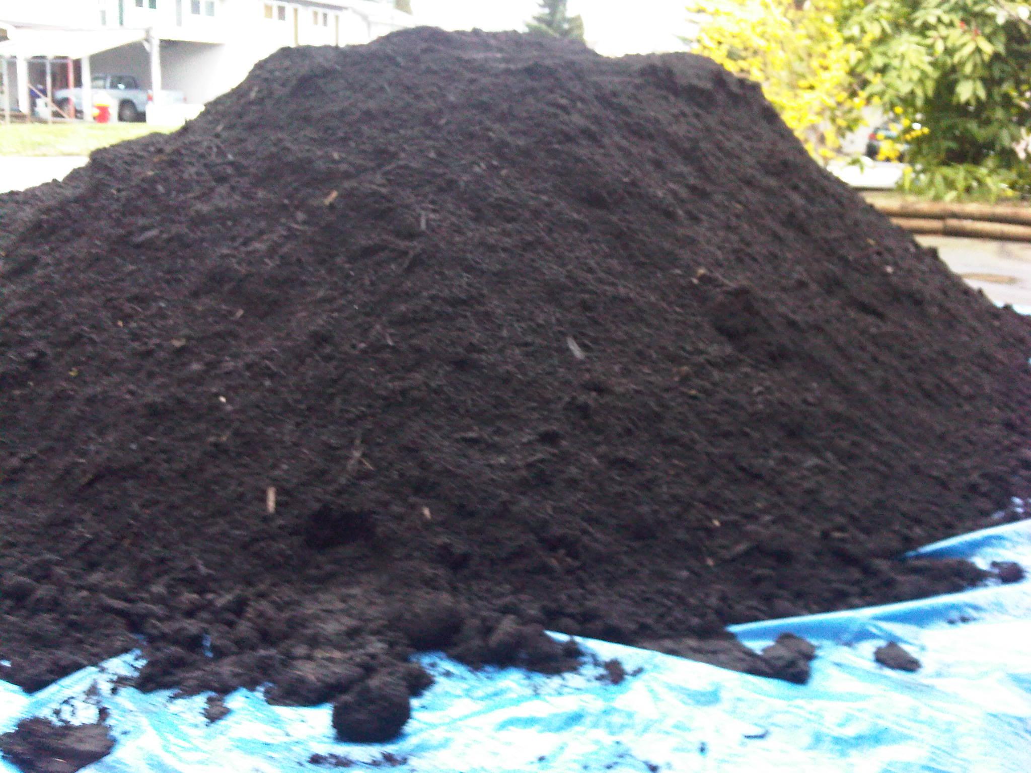 best_top_soil_compost
